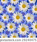 Seamless pattern flowers 29240475