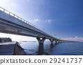 東京灣橫斷道路 橋 跨 29241737
