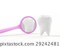 teeth tooth dental 29242481