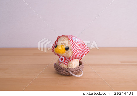 Hood duck 29244431