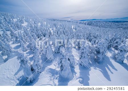 藏王樹冰鳥瞰 29245581