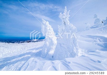 藏王樹冰 29245589