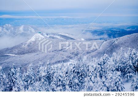 藏王樹冰山嵐景色 29245596