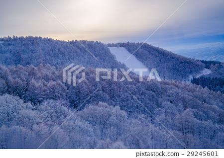 日落藏王樹冰 29245601