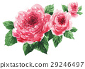 roses17318pix7 29246497