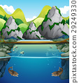 River scene with fish and mountain 29249330
