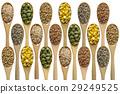 玉米 小麥 穀物 29249525