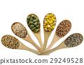 玉米 小麥 穀物 29249528
