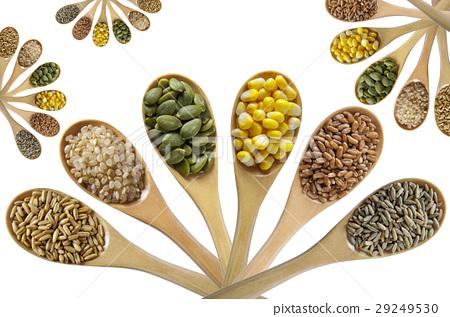 穀物,雜糧,糧食,Cereals, grains、穀物,食品、 29249530