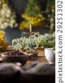 flower, herb, mortar 29251302