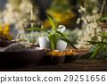 flower, herb, mortar 29251656