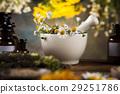 alternative, flower, herb 29251786