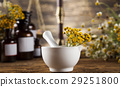 flower, herb, mortar 29251800