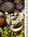 alternative, flower, herb 29252451