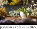 flower, herb, mortar 29252827