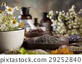 alternative, flower, herb 29252840