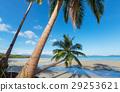 beach, summer, travel 29253621