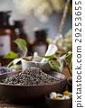 alternative, flower, herb 29253655