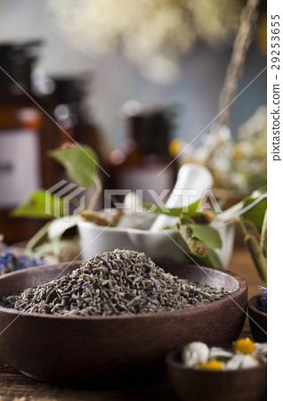 Herbs medicine,Natural remedy and mortar  29253655