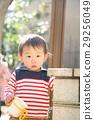 baby, boy, child 29256049