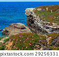 Summer blossoming Atlantic coast (Galicia). 29256331