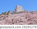 ฤดูใบไม้ผลิของปราสาทฮิเมจิ 29265278
