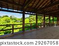 봄의 교토 토후 쿠지 통 하늘 다리에서 바라 보는 신록 29267058