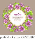 花朵 花 花卉 29270807