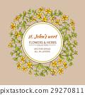 flower, herb, herbal 29270811
