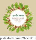 花朵 花 花卉 29270813
