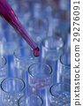Pipette dropping fluid into test tube 29276091