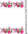 花朵 花 花卉 29279325