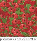 樹莓 花紋 圖樣 29282932