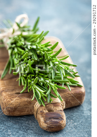 Fresh rosemary twigs 29291712