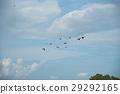 Birds were flying 29292165