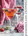 fruit, beverage, blueberry 29294002