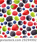 Realistic Berries Seamless Pattern  29294992