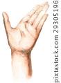 手 左手 平价 29305196