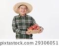 고령자, 라이프스타일, 생활 방식 29306051