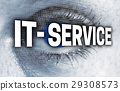 IT service eye with matrix looks at viewer concept 29308573