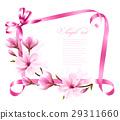 magnolia, blossom, branch 29311660