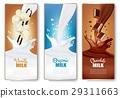 牛奶 向量 向量圖 29311663