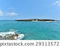 하와이 휴가 29313572