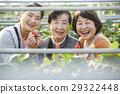 草莓狩獵高級 29322448