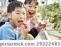 family, child, whelp 29322483