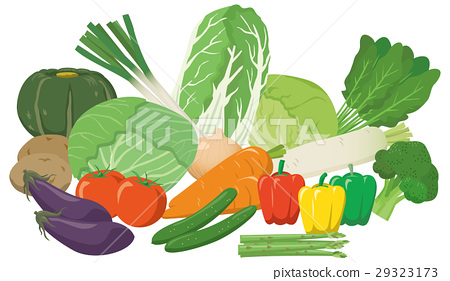 vegetables, vegetable, illustration 29323173