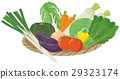 vegetables, vegetable, illustration 29323174