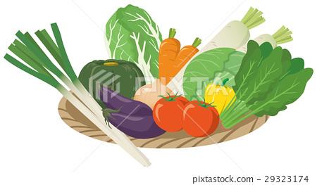 圖像例證套包括的菜_籃子 29323174