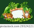 nature, tiger, wild 29324221