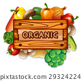 Organic vegetables and board 29324224
